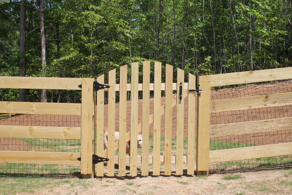 Arched Picket Style Gate Accurate Fence Atlanta Fence